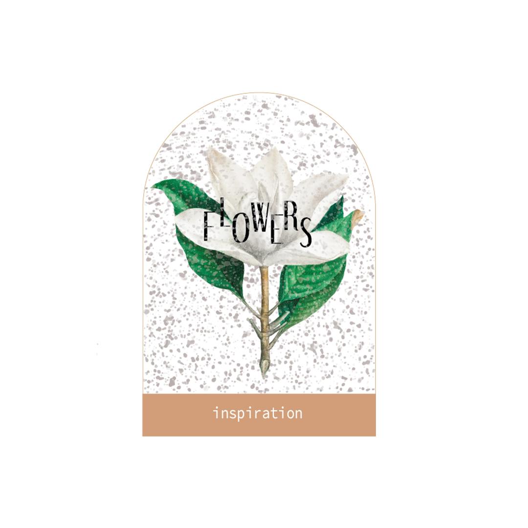 Liima Design - illustration Flowers inspiration